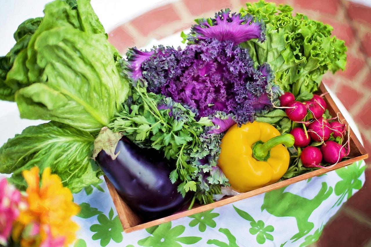 ההשפעות הבריאותיות של תזונה טבעונית